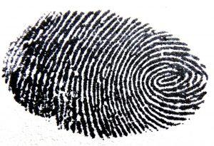 fingerprint, traces, pattern