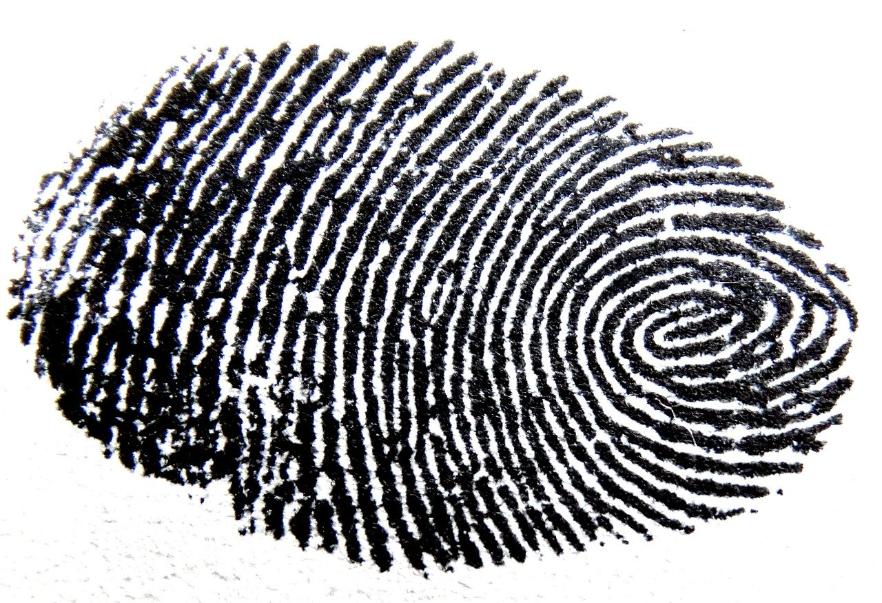 fingerprint, traces, pattern